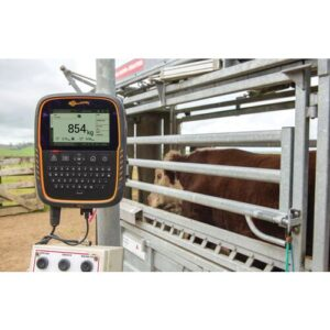 TW 3 Weigh Scale and Data Collector